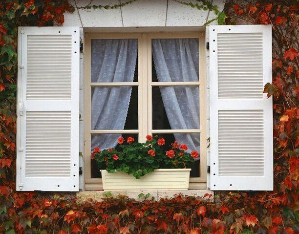 窗户还有那么多讲究  怎样选到适合你家的窗户?