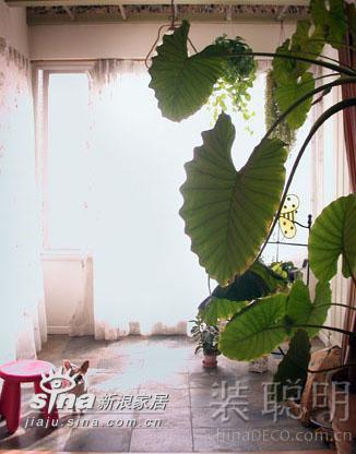 其他 二居 阳台图片来自用户2558746857在温馨两居室 享受城市里的桃源生活237的分享
