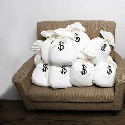 钱袋的抱枕