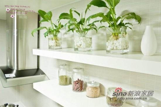 厨房有植物相伴,不会寂寞。