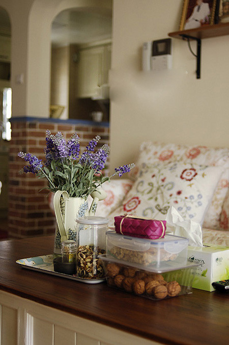 客厅的茶几一角。乐扣收纳一些干果。茶几的其他一些小摆设。
