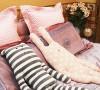 大床上的布偶