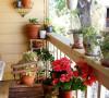 满眼绿色和花草的视觉阳台