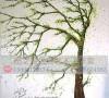 苏州 无锡太仓常熟昆山张家港上海手绘墙