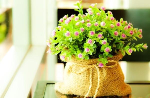 仿真花也有春天