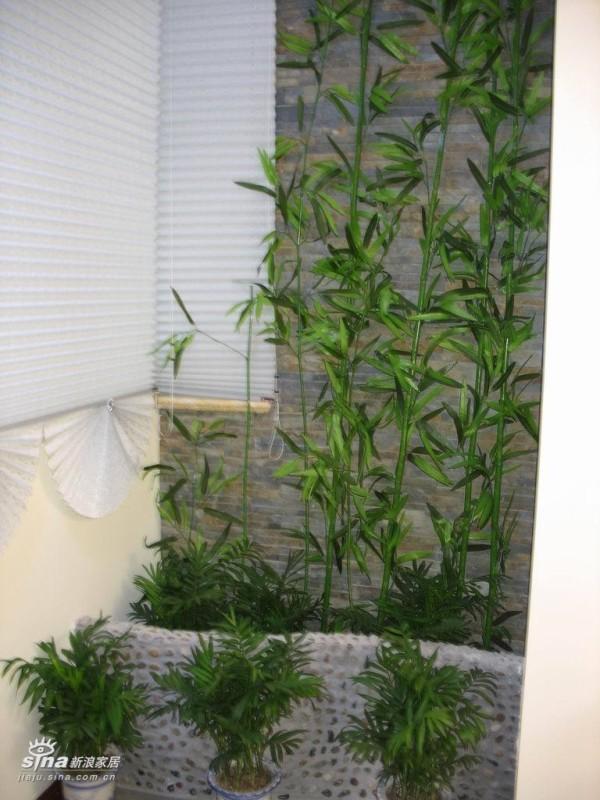 楼下阳台为休闲用,养殖一些真假花卉!