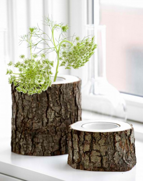 客厅 清新 花瓶 创意 森系 植物图片来自用户2771736967在Jia的分享