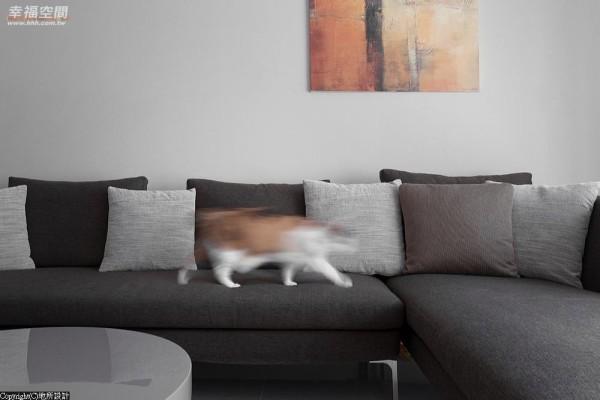 在色系的挑选上,这边特别跳了一组彩度略深的L型沙发,赋予视野场域另一个安定重心。