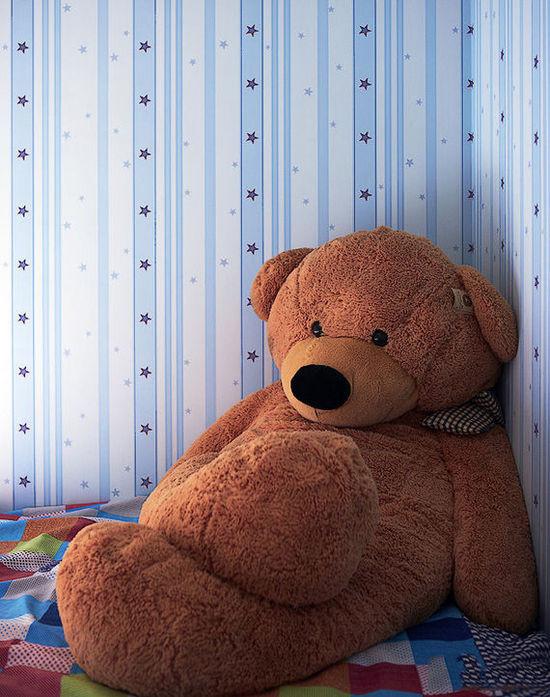 好忧伤的泰迪熊,静静的坐在这里沉思些什么呢?
