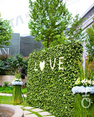 婚庆绿植墙
