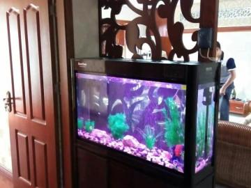 紫瑚香醍-金空间装饰案例分享
