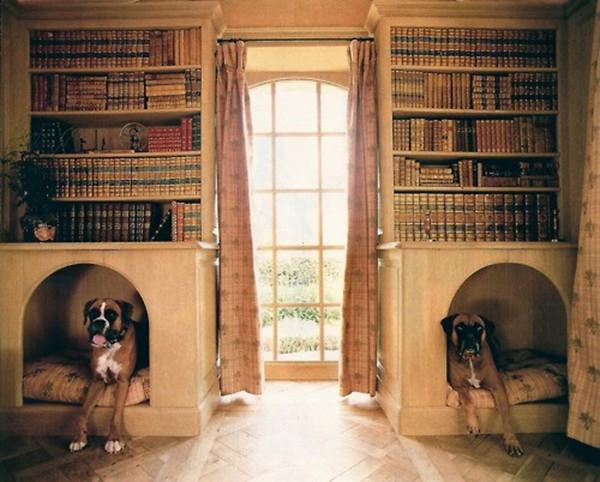 书柜法   在大书柜下部保留一个空间,让狗狗陪你一起看书。