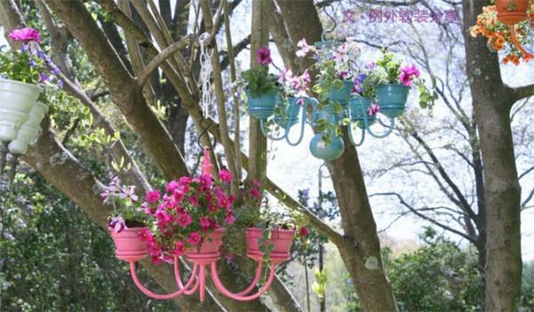 5、吊灯花盆   这个有创意吧!不要的吊灯也可以变成花盆来用的,很美有没有,就是有那么一点占地方。