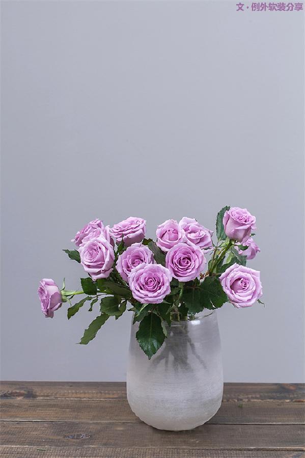 4、紫色玫瑰 rose & 高冷女王的唇色    淡紫色玫瑰透露出的冷静气质,独一无二,犹如女王看到高级定制的华服,冷艳的唇色轻挑出的满意弧度。这个看脸的时代,也算是颜值担当。