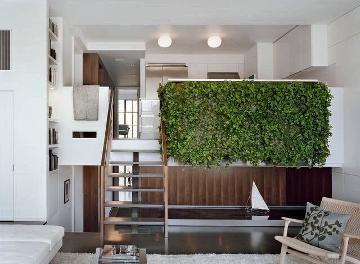 植物墙清晰