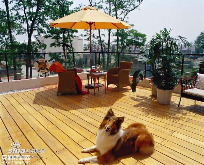 其他 其他图片来自用户2558757937在露台:户外生活、浪漫天地之一96的分享