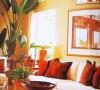 下面的落地植物为房间增添了几分热带风情