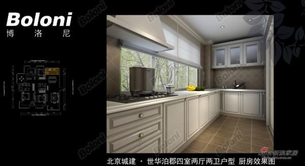 北京城建·世华泊郡四室两厅两卫户型 厨房