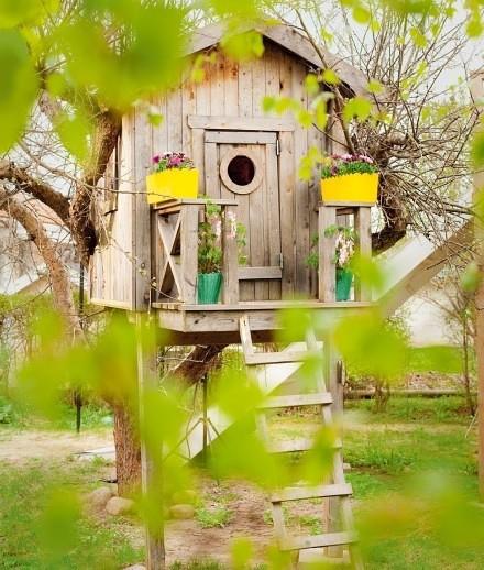 清新的小房子,和树融为一体了