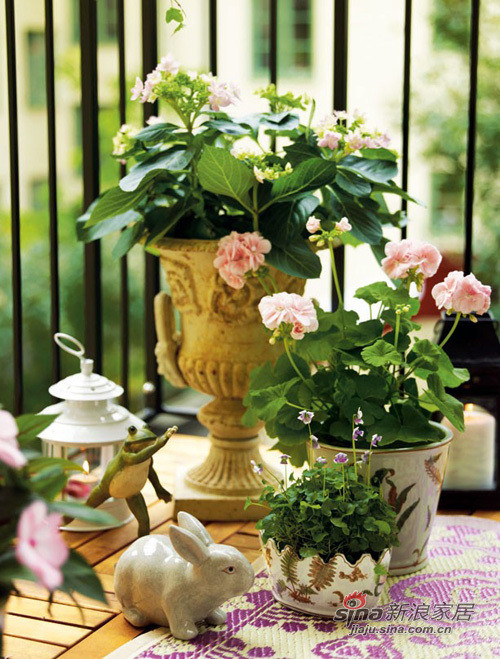 精改10平小阳台变身小花园