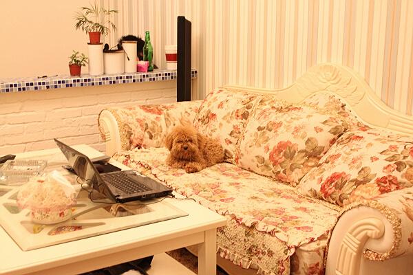 田园 一居 80后 客厅图片来自工长大本营装饰在清新小田园装修后期的分享