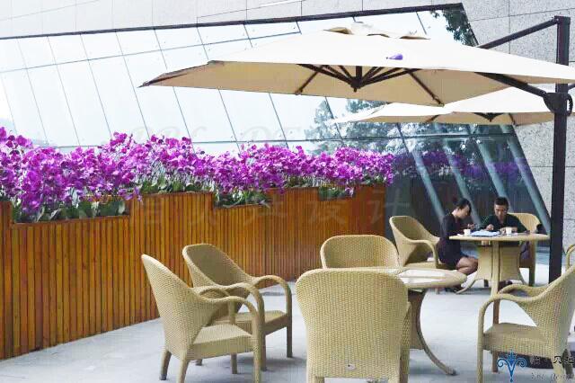 欧式 阳台图片来自广州怡贝拉装饰工程在贵阳国际金融销售体验中心的分享