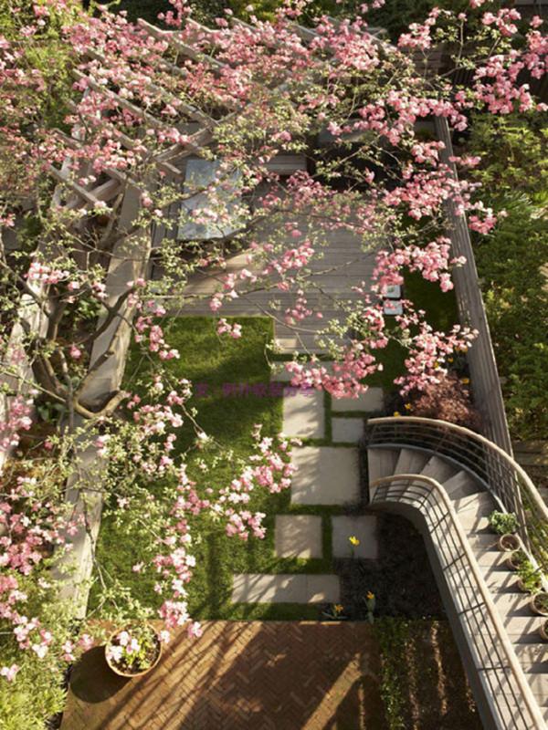 尤其是餐厅的墙饰,大大小小的鹿角挂饰为空间带来神秘的气息,如同身处森林之中。后花园落英缤纷,给人带来难言的浪漫。