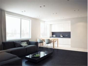 极致黑白现代公寓