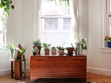 95平单身公寓 打造清新文艺范儿