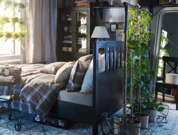 喜欢花草的,也可以把藤萝种到卧室里来,每天早上都能闻着花香起床。