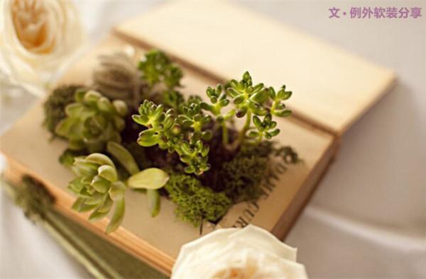 6 旧书巧当花盆用   多肉植物为主题的婚礼很独特,然后里面创意更多,曾经见到一款上图样式的。把硬壳旧书的中部掏空,用胶水密封好,然后包覆上一层保鲜膜!