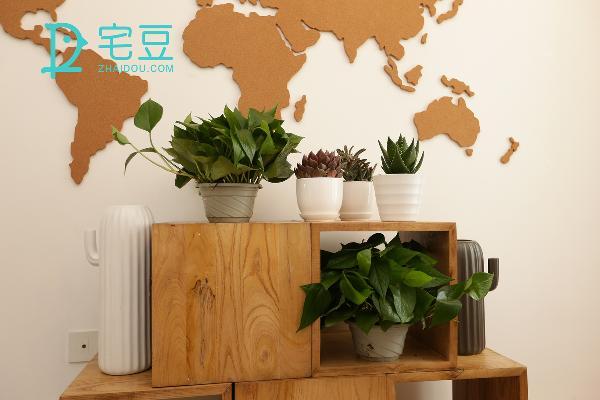 古朴的木质地图,融入木纹置物柜,不需要刻意,加入一点点绿色植物的生机,一片氧气森林就能轻松在家实现。