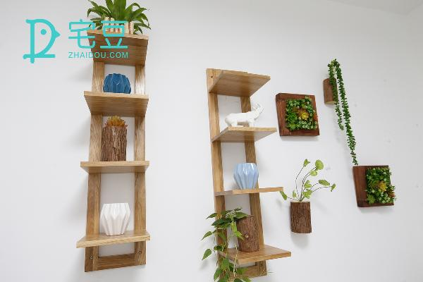 小绿植放在原木色的置物架上,多肉植物的壁饰在一旁的点缀,让细腻的自然气息充满墙面。