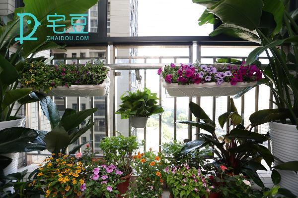 我们选择将阳台改造成为一个小花园,每次工作累了抬头一看便是城市喧哗下的万物生长。