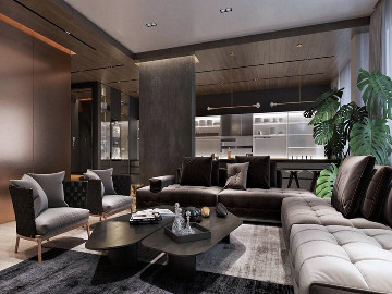 简约豪华室内设计案例