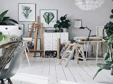 植物装饰房间的效果图