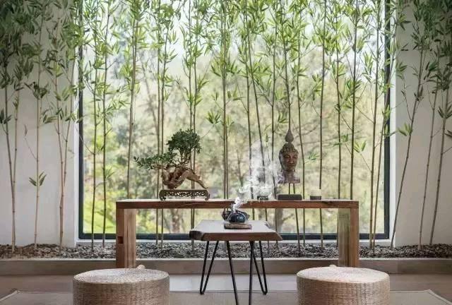 民宿图片来自云南俊雅装饰工程有限公司在云深不知处——民宿的分享