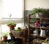 阳台采用比较粗犷的石材质感作为墙面材质,同时搭配一只石材的花瓶,结合上绿植的衬托,显得格外的清新、亲近自然。