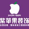 陕西紫苹果装饰